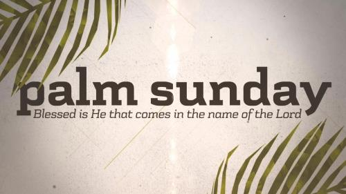 view the Motion Background Palm Sunday Worship Title 02