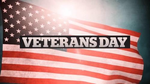 view the Motion Background Veterans Day American Flag Title