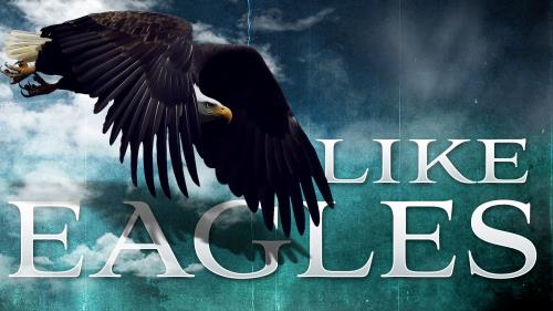 Like  Eagles PowerPoint Template 1