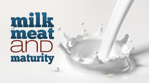 Milk and  Maturity PowerPoint Template 1
