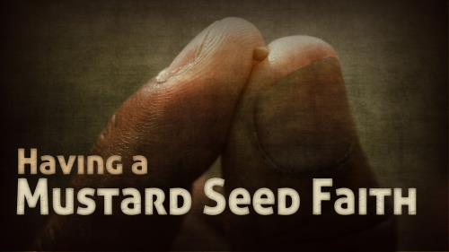Mustard  Seed  Faith PowerPoint Template 1