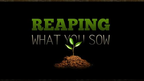 Reaping What You Sow PowerPoint Template 1