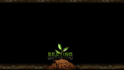 Reaping What You Sow PowerPoint Template 3