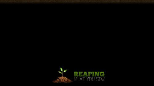 Reaping What You Sow PowerPoint Template 6