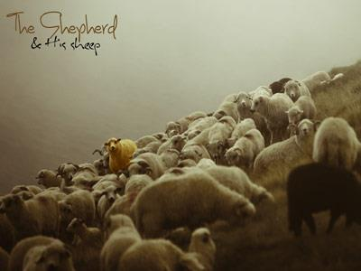 The Shepherd PowerPoint Template 3