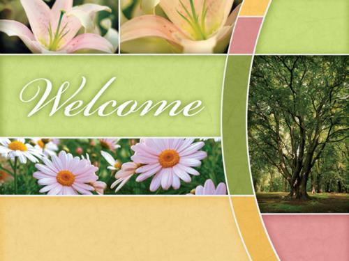 Church powerpoint template spring trees sermoncentral spring trees powerpoint template 1 toneelgroepblik Choice Image