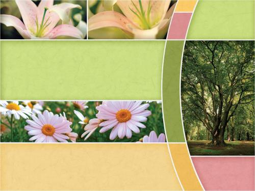 Church Powerpoint Template Spring Trees  SermoncentralCom