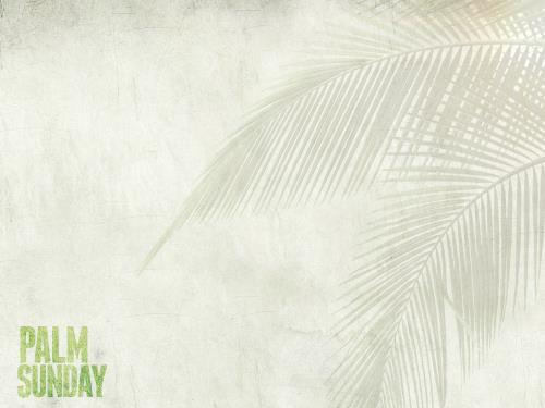 Palm Fronds PowerPoint Template 2