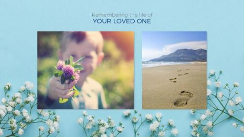 Funeral - Baby's Breath PowerPoint Template